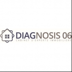 logo DIAGNOSIS 06